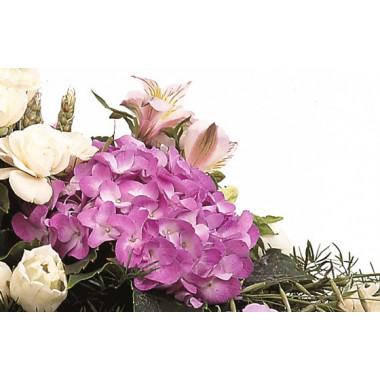 Fleurs en Deuil | vue sur un hortensia parme de la raquette de fleurs Affection