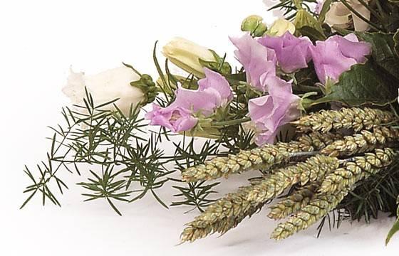 Fleurs en Deuil | vue sur des alstroemerias et lysianthus de la raquette de deuil