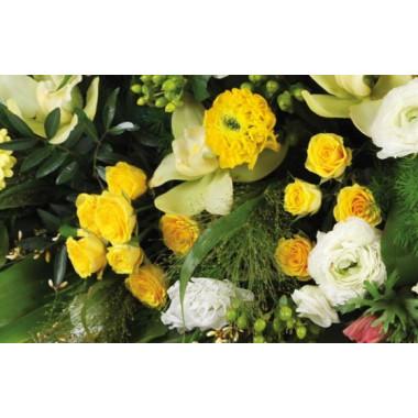 """Fleurs en Deuil   vue sur des roses jaunes de la Raquettes fleurs colorées de deuil """"Comète"""""""