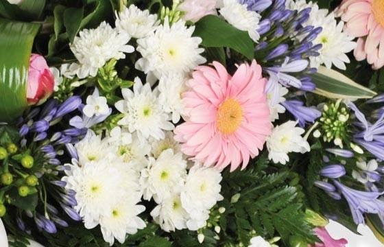 Fleurs en Deuil | vue sur des refours blancs et un gerberas rose