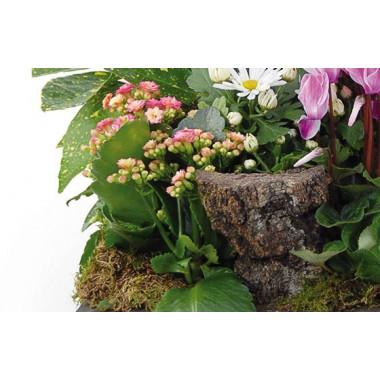 Fleurs en Deuil | vue sur le bas de la coupe de plantes Infini
