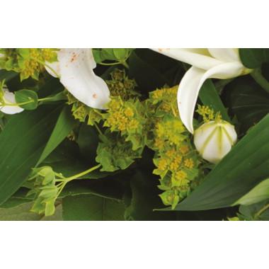 Fleurs en Deuil | zoom sur les buplurum du bouquet de deuil