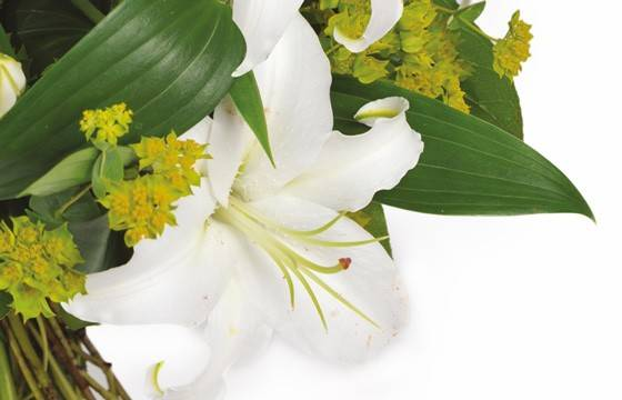 Fleurs en Deuil | zoom sur un lys blanc de la création florale