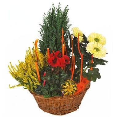 Fleurs en Deuil |  image de la Composition deuil rouge & jaune Jardin d'Hiver