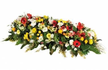 """Fleurs en Deuil   image Raquettes fleurs colorées de deuil """"Comète"""""""