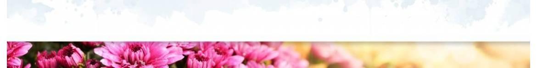 Livraison de chrysanthèmes & plantes sur tombe par un fleuriste